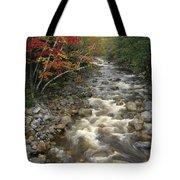 Mountain Stream In Autumn, White Tote Bag