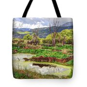 Mountain Valley Marsh - Hdr Tote Bag
