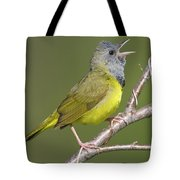 Mourning Warbler Oporornis Philadelphia Tote Bag