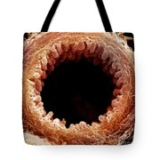 Mouse Bronchiole, Sem Tote Bag