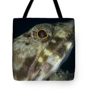Mouth Of A Variegated Lizardfish, Papua Tote Bag