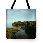 Mouth Of Beaver River Tote Bag
