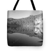 Mowich Lake Mono Print Tote Bag
