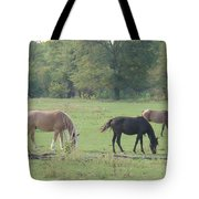Mowing The Lawn Tote Bag