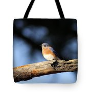 Mr. Bluebird Tote Bag