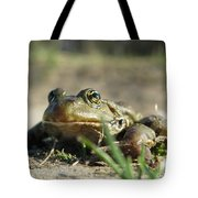 Mr. Charming Eyes Tote Bag