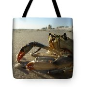 Mr. Crabs Tote Bag