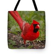 Mr. Obvious Tote Bag