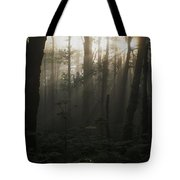 Mt. Hood National Forest Near Larch Tote Bag