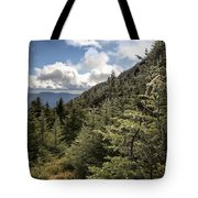 Mt Manfield Vermont 21 Tote Bag