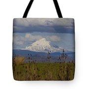 Mt Mclaughlin Springtime Tote Bag