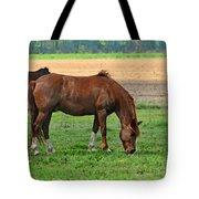 Mucnching Sweet Spring Grass I Photoart Tote Bag