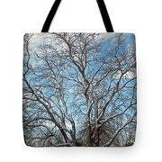 Mulberry Tree In Snow Tote Bag