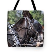 Mule Days - Benson - A Pair Of Aces - Mules Tote Bag