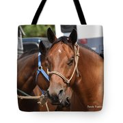 Mule Days Benson Tote Bag