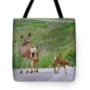 Mule Deer Doe And Twin Fawns Tote Bag