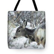 Mule Deer Odocoileus Hemionus In Snow Tote Bag
