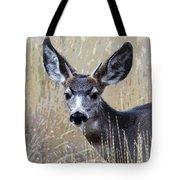 Mule Deer Spike Tote Bag