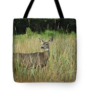 Mule Deer Winthrop Wa 9176 Tote Bag