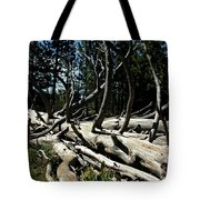 Mules Ear Timber Tote Bag