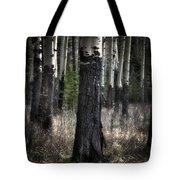 Muleshoe Trees Banff Tote Bag