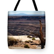 Muley Point Tote Bag