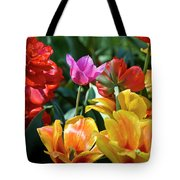 Multi-colored Tulips In Bloom Tote Bag