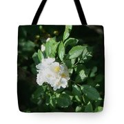 Multiflora Bouquet Tote Bag