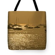 Mumbai In The Morning In December Tote Bag