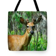 Munch Time Tote Bag