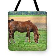 Munching Sweet Spring Grass I Tote Bag