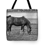 Munching Sweet Spring Grass II Tote Bag