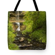 Munising Falls 1 Tote Bag