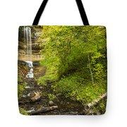 Munising Falls 3 Tote Bag