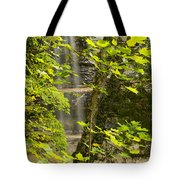 Munising Falls 4 Tote Bag