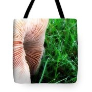Mushroom And Dewdrops Tote Bag