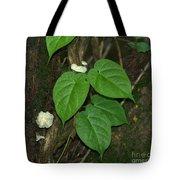 Mushroom Between The Leaves Tote Bag