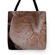 Mushroom Gills Tote Bag