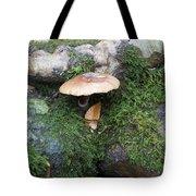 Mushroom In Moss Tote Bag