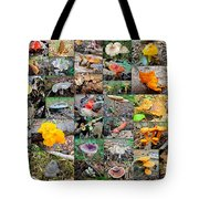 Mushroom Planet - Montgomery County Pa Tote Bag
