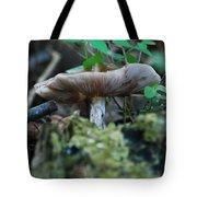 Mushroom Up Close 7046 1676 Tote Bag
