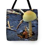 Mushrooms 1 Tote Bag