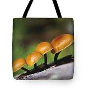 Mushrooms Growing On Log Tote Bag