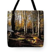 Mushrooms In A Forest Tote Bag