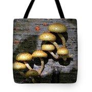 Mushrooms In Relief  Tote Bag