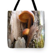 Mushrooms On A Tree Tote Bag