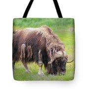 Musk Ox Tote Bag