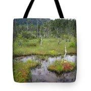 Muskeg Bog With Ponds, Mitkof Island Tote Bag
