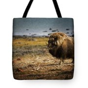 Muskox Ovibos Moschatusin The Northwest Tote Bag