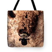 Mustached Mud Bee Tote Bag